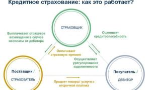 Как вернуть страховку по кредиту в Россельхозбанке в 2021 году: условия, образец