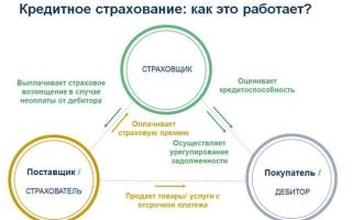 Как вернуть страховку по кредиту в Россельхозбанке в 2020 году: условия, образец