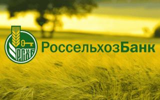 Вклад «Пенсионный Плюс» в Россельхозбанке: условия на 2020 год, ставки