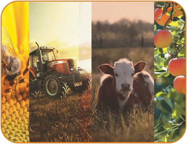 Кредит на развитие ЛПХ в Россельхозбанке: цели кредита